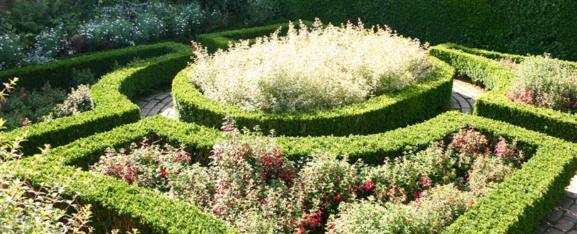 Quiet American Gardener, The: Hidcote Manor Gardens