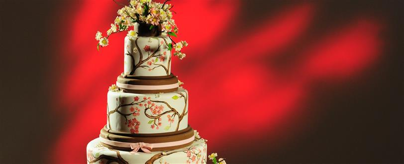 amazing wedding cakes season 1 amazing wedding cakes series 1 the fence 10726