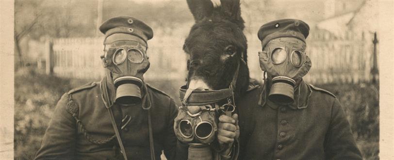 скачать игру The Great War через торрент - фото 6