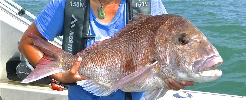 how to get off plenty of fish
