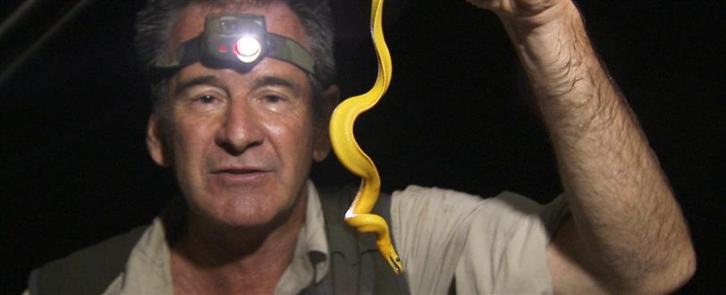 Ten Deadliest Snakes With Nigel Marven (Series 1)